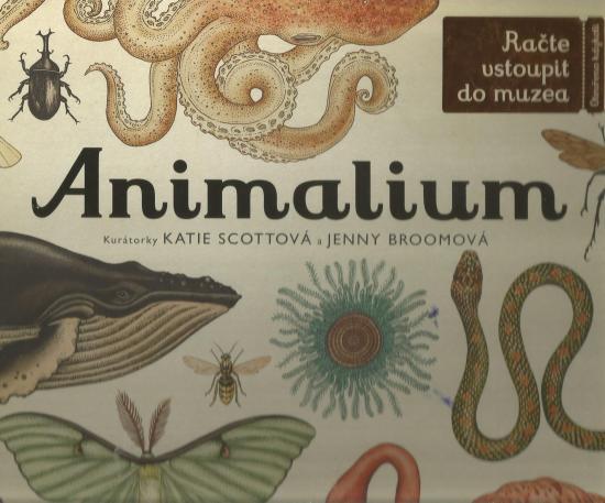 anymalium